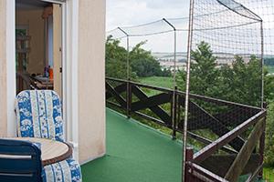 gesicherter Balkon einer Katzenwohnung